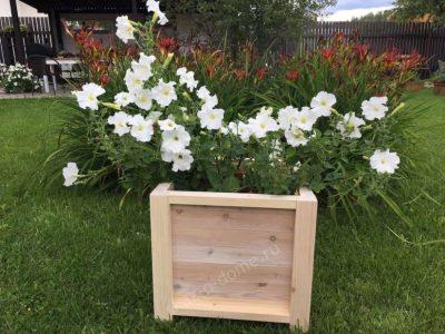 Коробка для садовых растений